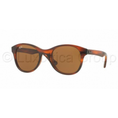 Ray-Ban RB4203 820/73 SHINY STRIPED HAVANA DARK BROWN napszemüveg