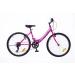 Neuzer Cindy 24 1 kerékpár