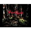Värttinä Miero CD