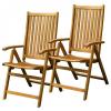 Fieldmann FDZN 4001 dönthető kerti szék (2 db)