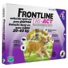 Frontline Tri-Act rácsepegtető oldat kutyáknak 20-40 kg-os kutyáknak