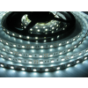 LED szalag HidegFehér beltéri 3528 60LED / 2év 4,8W
