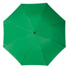 RAINBOW esernyõ, zöld (RAINBOW kézi nyitású egyszeres teleszkópos összecsukható esernyõ, nylon tokban.)