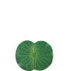 Lotus alátét lótusz virág