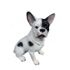 Kutya-Francia bulldog-ülő/43cm