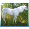 Ló-190 cm/fehér