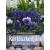 Reader's Digest Kertészkedjünk balkonon, teraszon!