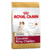 Royal Canin Breed Cavalier King Charles Junior - 4 x 1,5 kg