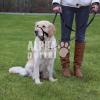 Trixie Kiképzõhám kutyák részére S 22cm
