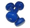 Egykezes súlyzó - 2 x 1 kg kézisúlyzó