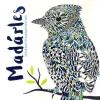 Claire Scully, Richard Merritt Claire Scully, Richard Merritt: Madárles - Színezheto madárportrék