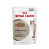 Royal Canin Wet Ageing +12 12*85g