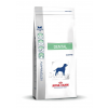 Royal Canin Diet Royal Canin Dental Large Dog DLK 22 6kg