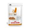 Royal Canin Diet Royal Canin Senior Consult Stage 1 Feline 12*100g macskaeledel