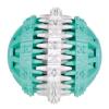 Trixie Denta Fun fogtisztító labda, mentás 6 cm