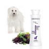 Biogance White Snow Shampoo 250ml