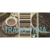 Vivida Bianco Inserto Cafe A 30x60