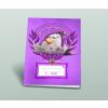 AngryBirds Füzet (27-32) A5 KOCKÁS Angry Birds MOVIE GIRLS Relax <20db/cs>