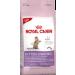 Royal Canin Kitten Sterilised macskatáp 3×4kg Akció!