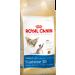 Royal Canin Siamese Adult macskatáp