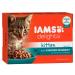 IAMS Delights Kitten szószban - Csirke 24 x 85 g