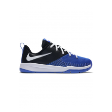 Nike Team Hustle D 7 Low (GS)