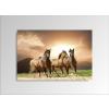 Byhome Digital Art vászonkép | 1230-S Running Horses ONE