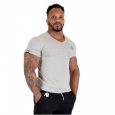 ESSENTIAL V-NECK T-SHIRT (GRAY) [XXXL]
