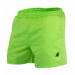 MIAMI SHORT (NEON LIME) [XXL]