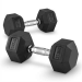 Capital Sports Capital Sports Hexbell Dumbbell Kurzhantel 27,5kg