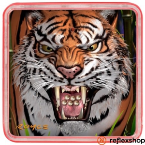 Cheatwell Games Ball Puzzles Magna Tigris logikai játék