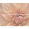 Zalakerámia Elegance Dahila F-53021 2x20x50 dekor
