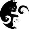 Gungldekor Macskák 2 db plottervágott autós matrica applikáló fóliával