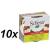 Schesir Konzerv Dog Fruit - csirke aszpikban 10 x 150g