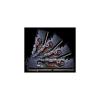 G.Skill DDR4 32GB PC 2933 CL14 G.Skill KIT (4x8GB) 32GFX AMD Ryzen F4-2933C14Q-32GFX