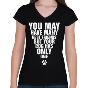 PRINTFASHION A kutyádnak csak egy barátja van! - Női V-nyakú póló - Fekete