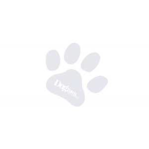 Acana HERITAGE Puppy Large Breed 11,4kg 2db
