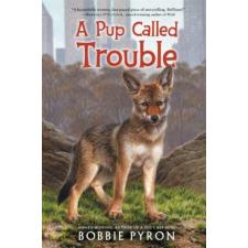 A Pup Called Trouble – Bobbie Pyron idegen nyelvű könyv