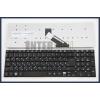 Acer Aspire P255-M fekete magyar (HU) laptop/notebook billentyűzet