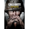 Activision Blizzard Call of Duty: World War II (PC - digitális kulcs)