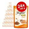 Animonda Rafiné megapack 24 x 100 g - Adult szárnyas & marha sajtszószban
