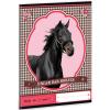 Ars Una Rózsaszín lovas sima füzet A/5 méretben