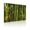 Artgeist Kép - Green bamboo