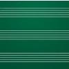 ASS Zöld falitábla választható vonalazással - kerámia-acél, 200x100 cm