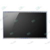 AU Optronics B101AW03 V.2