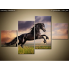 Balkys Trade Nyomtatott kép Erős fekete ló 160x90cm 1149A_4Q