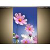 Balkys Trade Nyomtatott kép Virágokkal teli rét 1125A_1S