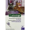 Bayer Advantage 80 Cat/Rabbit 0,8ml