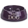 BEEZTEES bestdog kutyatál 18x6,5cm-300mllila