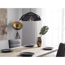 Beliani Modern mennyezeti függőlámpa fekete színben SENIA világítás